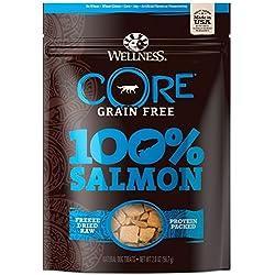 Wellness Natural Pet Food Core Grain Free 100-Percent Salmon Freeze Dried Dog Treats, 2 oz