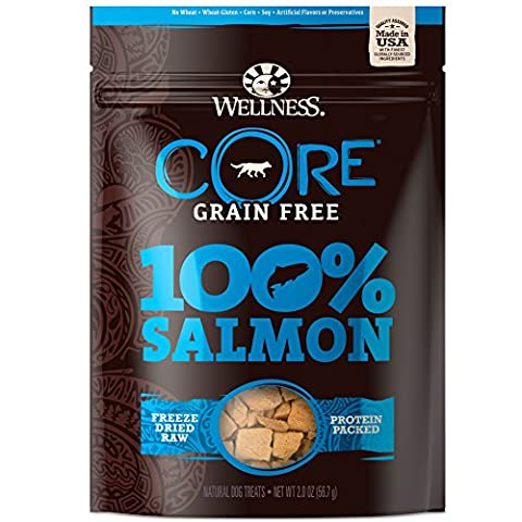 Wellness Natural Pet Food Core Grain Free 100-Percent Salmon Freeze Dried Dog Treats, 2 oz - Revolution Dog
