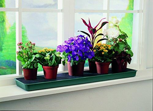 Tierra Garden GP71 Windowsill Self Watering Plant Tray by Tierra Garden (Image #1)