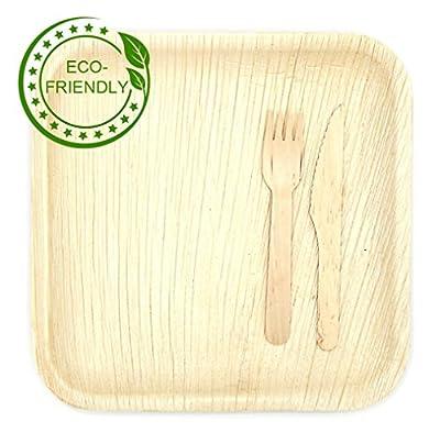"""10"""" Square Palm Leaf Plates, Forks/Knives"""