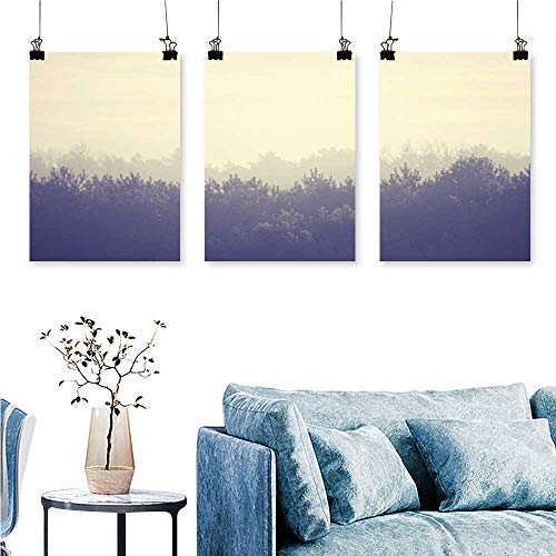 SCOCICI1588 Three Consecutive Painting Frameless The Mist Shrouded The Forest Artwork for Wall Decor Triptych 24 INCH X 40 INCH X 3PCS