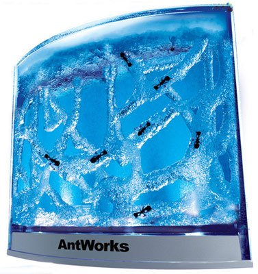 Fascinations Antworks Illuminated Blue from Fascinations