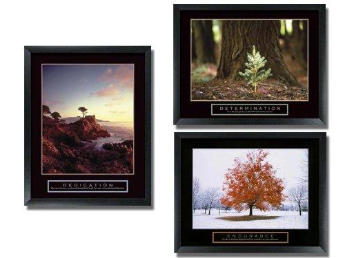 3 Framed Tree Motivational Posters Aspen Pine by wallsthatspeak