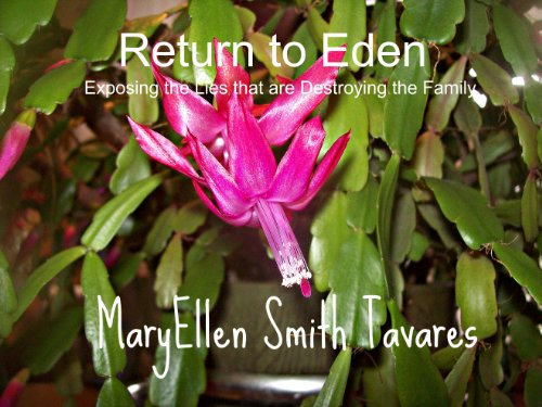 Return to eden exposing the lies that are destroying the family return to eden exposing the lies that are destroying the family by tavares fandeluxe Images