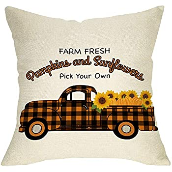 Amazon Com Ussap Farm Fresh Pumpkins Amp Sunflowers Plaid