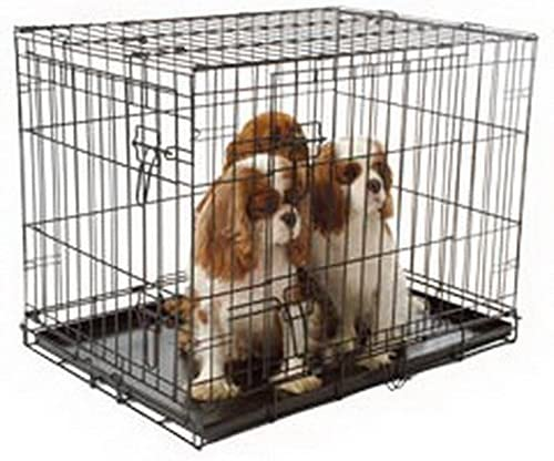 Qpets 24 by 18 by 21-Inch Dog Cage, Medium
