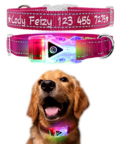 Personalized Dog Collar with Illuminated ABS Buckle, Embroidered LED Dog Collar with Custom Pet Name & Phone Number, Reflective Stitching Safety, Waterproof Flashing Light Breakaway ()