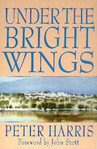 Under the Bright Wings pdf epub