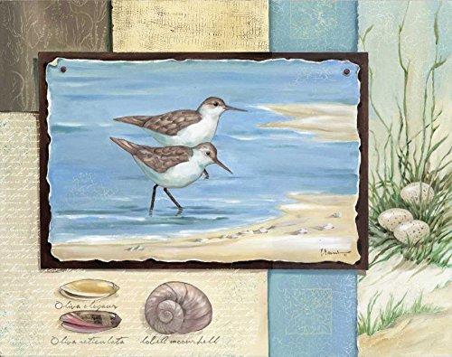Sandpiper Wall Decor - HeritageArtDecor Sandpiper Collage I - Fine Art Print on Canvas Home Decor Print 18 x 14 Inch - Wall Art Painting Canvas Print ONLY -NO Frame