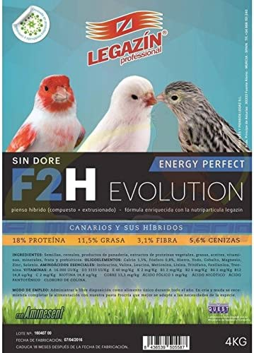 LEGAZIN F2H ENERGY PERFECT EVOLUTION