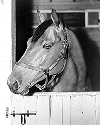 1938 Seabiscuit Kentucky Derby Horse Racehorse Old Historical Photograph - Various Sizes Reprint