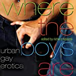 Where the Boys Are: Urban Gay Erotica | Richard Labonté