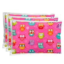"""Ice Pack for Lunch Boxes (3 Pack) by Bentology (6""""x4.5"""") - Pink Owl Design"""