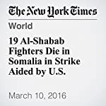 19 Al-Shabab Fighters Die in Somalia in Strike Aided by U.S. | Mohammed Ibrahim