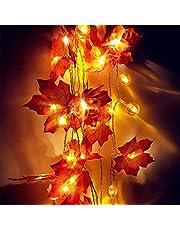 Lichtketting decoratie licht pompoen waterdicht lichtsnoer, herfstslinger, dimbaar, batterij voor huis, feest, tuin, Kerstmis, Halloween