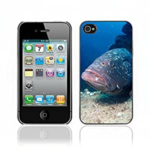Carcasa Funda Case //Grouper Fish V0000272// Apple iPhone 4 4S