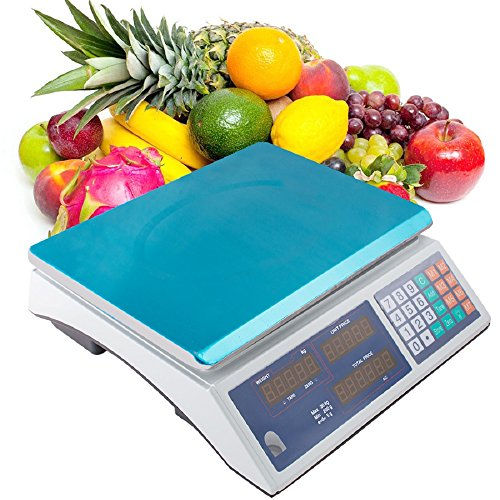 Vinmax Digital Weight Scale 66lb/30kg Electrical Price Computing Scale Food Meat Scale Retail Price Counting Equipment for Food Fruit Produce Cafeteria Grocery Deli Market Farmer(US Shipping 3-5 days) (Best Grocery Store Deli Meat)