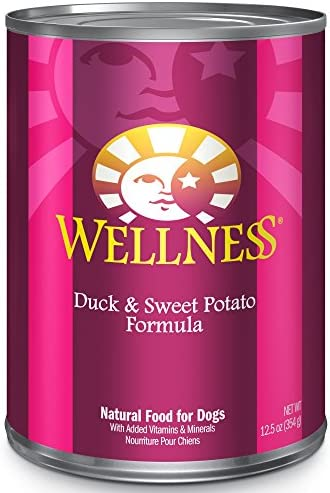Wellness Complete Health Natural Duck and Sweet Potato Recipe Wet Dog Food