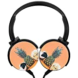 Pineapple Hamster Over-ear Noise cancelling 3D Printed Lightweight Headphone