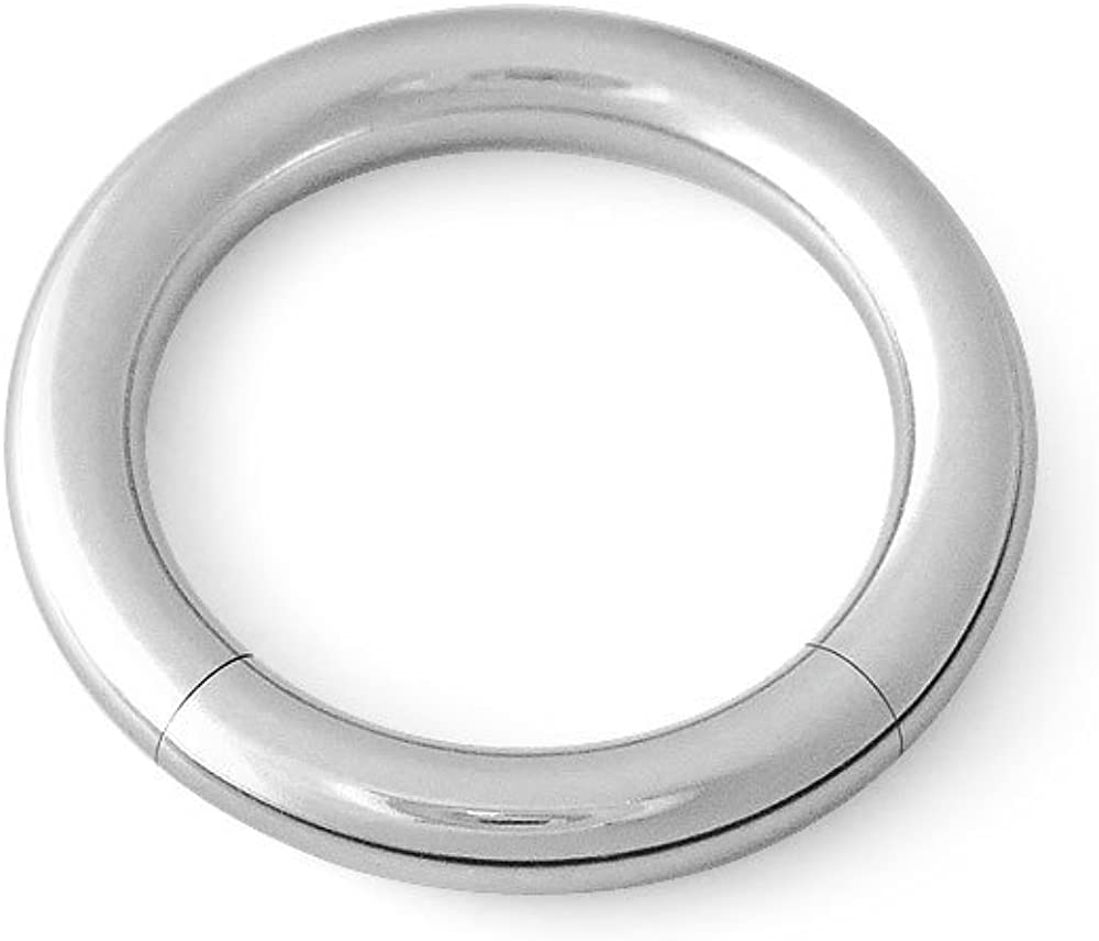 Scrap Metal 23 316L Surgical Steel Segment Captive Ring CBR 4g