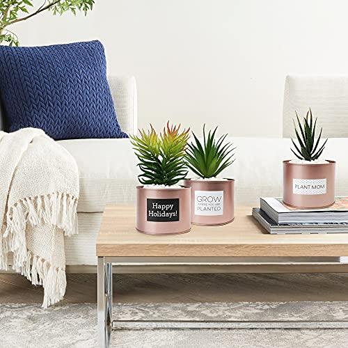 LotFancy Faux Succulents Plants for Desk Decor, Office Artificial Potted Fake Plants for Bedroom Kitchen, 3 Pcs Plastic Artificial Succulents with Metallic Rose Gold Jars & Decoration Accessories