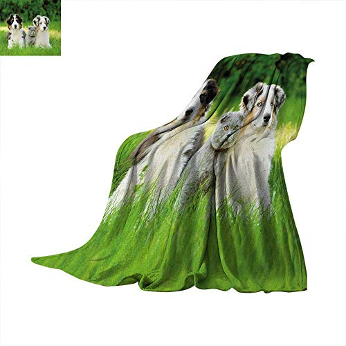 Sleeper Taggies (Anhuthree Dog Super Soft Lightweight Blanket Cute Pets Puppy Family in The Garden Australian Shepherds and A Cat Scenery Summer Quilt Comforter 80