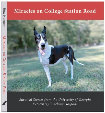 Miracles On College Station Road
