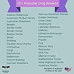 Dog Decor Rottweiler Wall Art - Quote Print (8.5x11 Unframed) | Pet Memorial Gifts | Dog Mom Gift | New Puppy Keepsake | Original Rottweiler Gifts for Dog Lovers 10