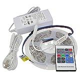 Best LEDwholesalers Rope Lights - LEDwholesalers 24-Volt 16.4-ft High Output RGB Color-Changing Kit Review