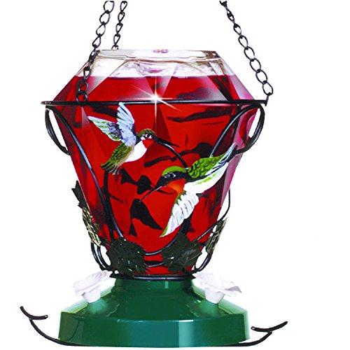 Birdscapes-701-Hummingbird-Edition-24-Ounce-Glass-Hummingbird-Feeder