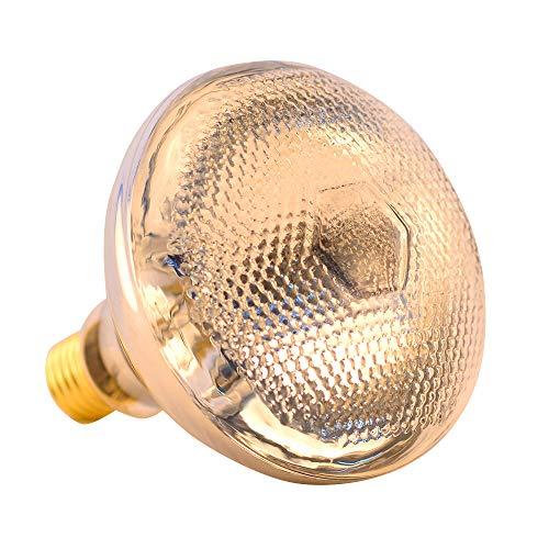 par38 lightbulb - 4