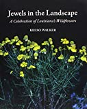 Jewels in the Landscape 9781887366427