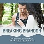 Breaking Brandon: Fate, Book 2 | Elizabeth Reyes