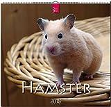 Hamster 2018
