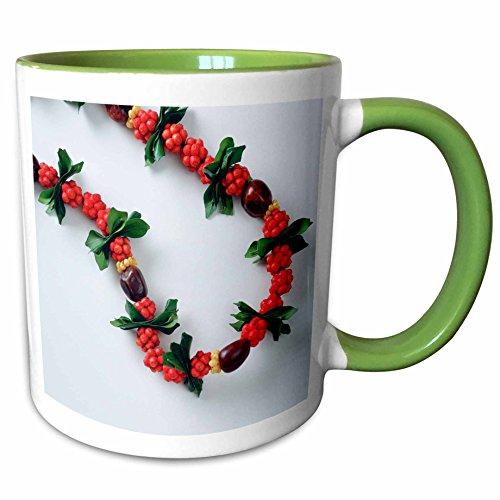 3dRose Danita Delimont - Hawaii - Lei, Tradition, Flower, Hawaii - NA01 DPB0031 - Douglas Peebles - 11oz Two-Tone Green Mug (mug_83390_7) (Flower Lei Two Tone)