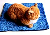 """Thermal Cat Pet Dog Warming Bed Mat - BLUE, (Leopard Motif) 22"""" L x 19"""" W, by Downtown Pet Supply"""