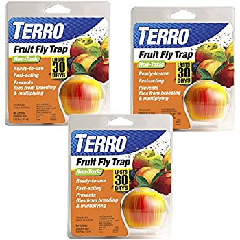 TERRO Fruit Fly Trap (Pack of 3)