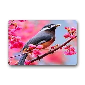 """Beautiful Sparrow Felpudo alfombra para interiores/exteriores/puerta delantera/alfombrillas de baño Dormitorio Felpudo 23.6""""(L) X 15,7(W)"""