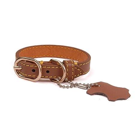 Gulunmun Collar de Perro de Cuero Collares Personalizados para ...