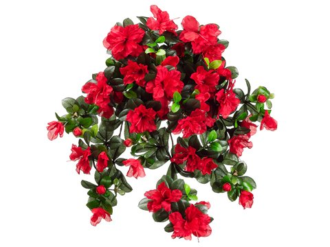 29-Water-Resistant-Azalea-Hanging-Bush-x10-RED-Pack-of-6
