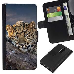 KingStore / Leather Etui en cuir / LG G2 D800 / Guepardo africano del gato grande