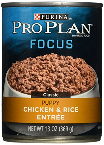 Purina Pro Plan Wet Dog Food, Focus, Puppy Chicken & Rice Entree Classic, 13-Ounce Can, Pack of 12 - Plan Puppy Food