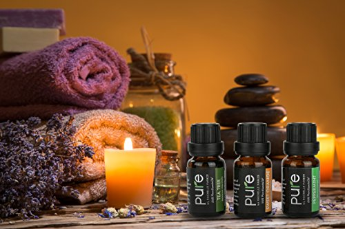 Top 6 Essential Oil Blends Gift Set for Diffuser. Breathe, Good Night, Rejuvenate, Muscle Relief, Stress Relief, and Immunity Premium Synergy Blends for Diffuser, Massage etc