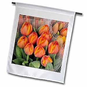 Danita Delimont - Flowers - USA, Oregon, Portland. Spring tulip flowers - US38 BJA0448 - Jaynes Gallery - 18 x 27 inch Garden Flag (fl_93580_2)