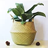 Natural Seagrass Woven Round Tote Basket Panier with Handle for Foldable Laundry Storage Organizer Picnic Plant Flower Pots Toy (Natural)