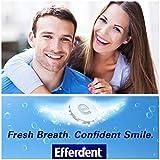 Efferdent PM Denture Cleanser Tablets, Overnight