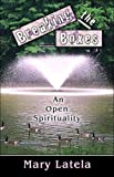 img - for Breaking the Boxes: An Open Spirituality book / textbook / text book