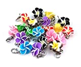 yueton 20pcs Assorted Color Frangipani Flower Dangle Charms - Best Reviews Guide