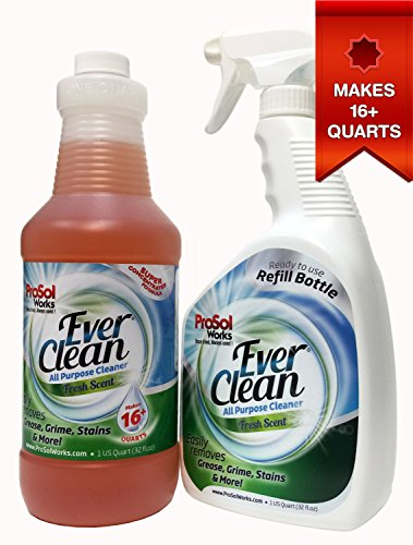 ProSol EverClean All Purpose Cleaner 32oz. Concentrate - Makes 8+ Quarts - Includes 1 FREE 32oz. Empty Spray Bottle - Kitchen, Bathroom, Entire Household Multi Surface Cleaning Spray. Safe for ()