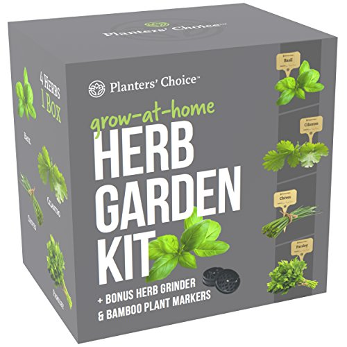 Planters' Choice Organic Herb Growing Kit + Herb Grinder - Complete Kit to Easily Grow 4 Herbs from Seed (Basil, Cilantro, Chives & Parsley) with Comprehensive Guide | Unique Gift by Planters' Choice